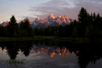 Schwabacher's Morning